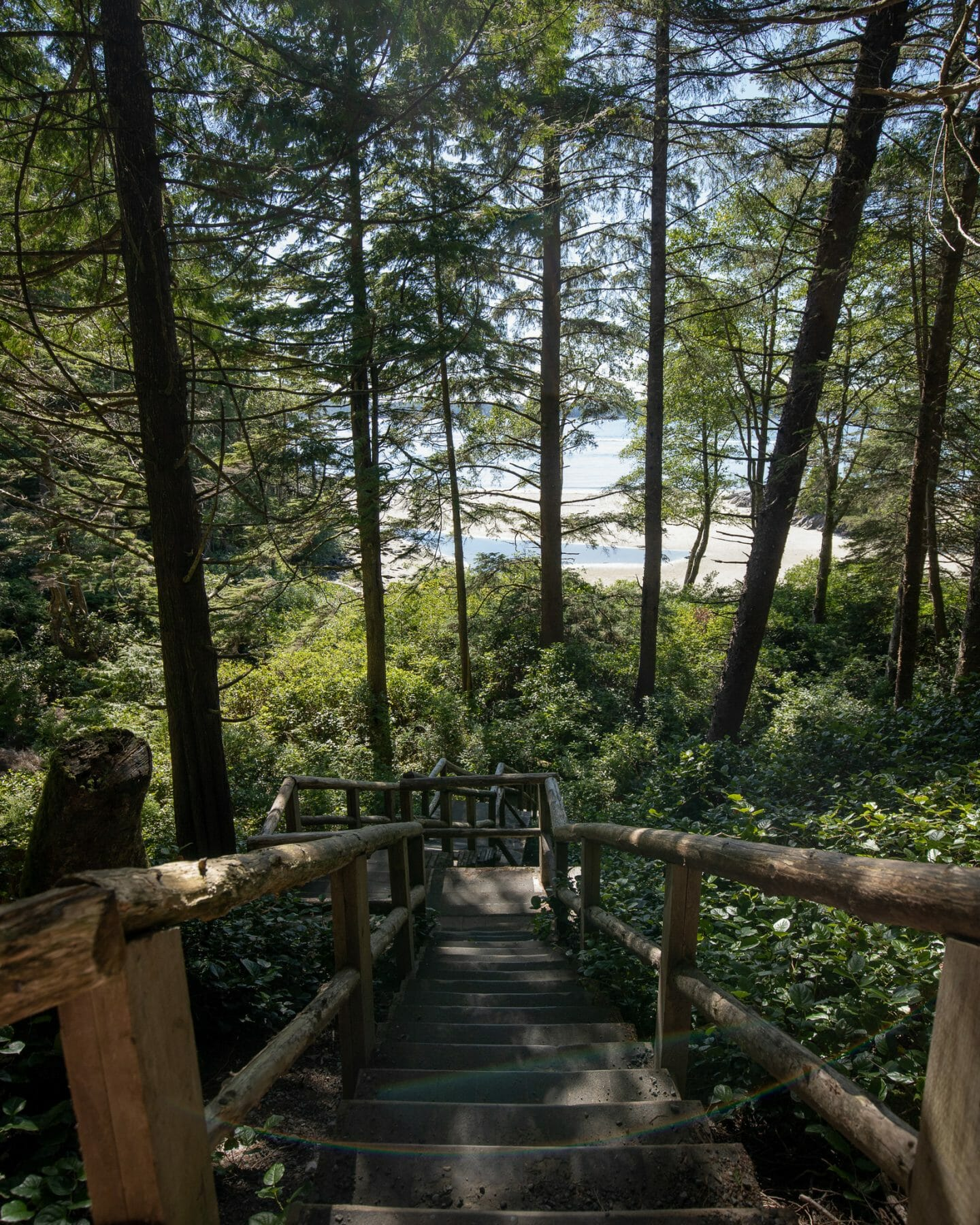 Tonquin Trail Stairs in Tofino