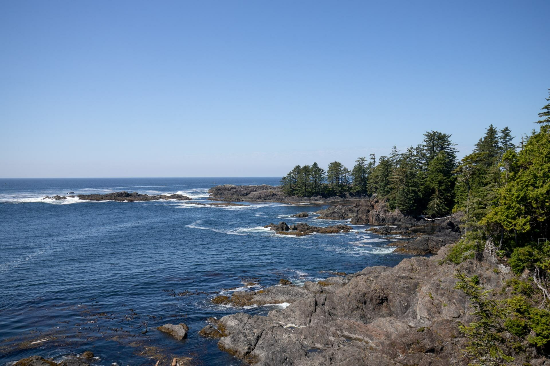 Wild Pacific Trail in Ucluelet