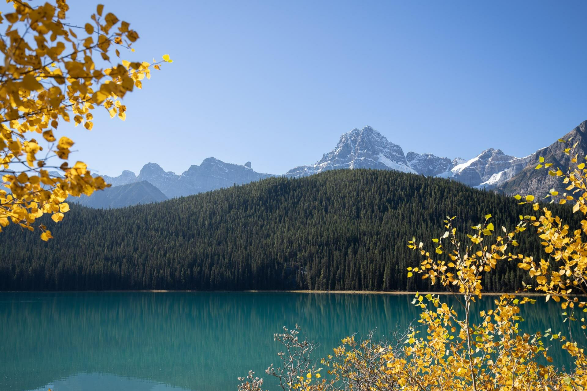 Best things to see Icefields Parkway Itinerary