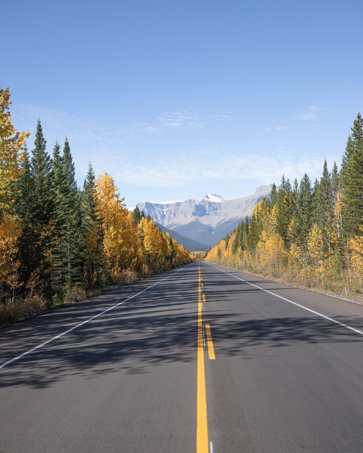Icefields Parkway Canadian Rockies Road Trip