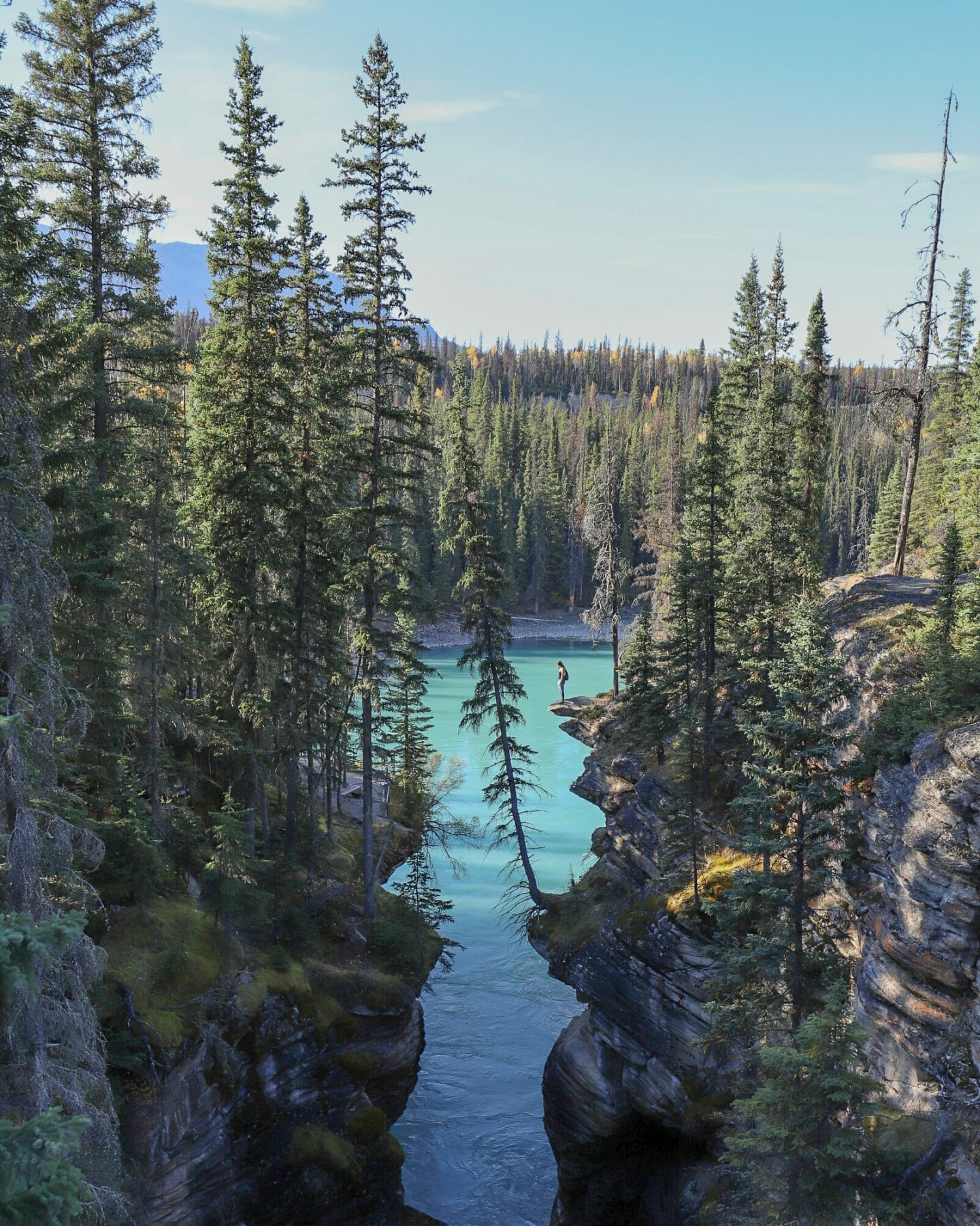 Icefields Parkway Itinerary Athabasca Falls