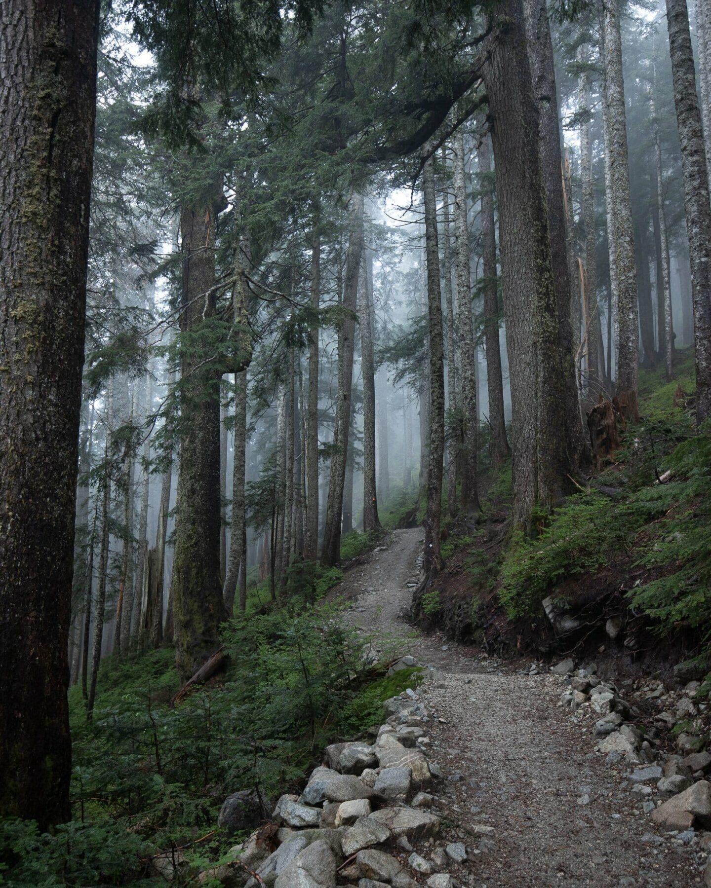 Beautiful hikes around Vancouver - St Marks Summit