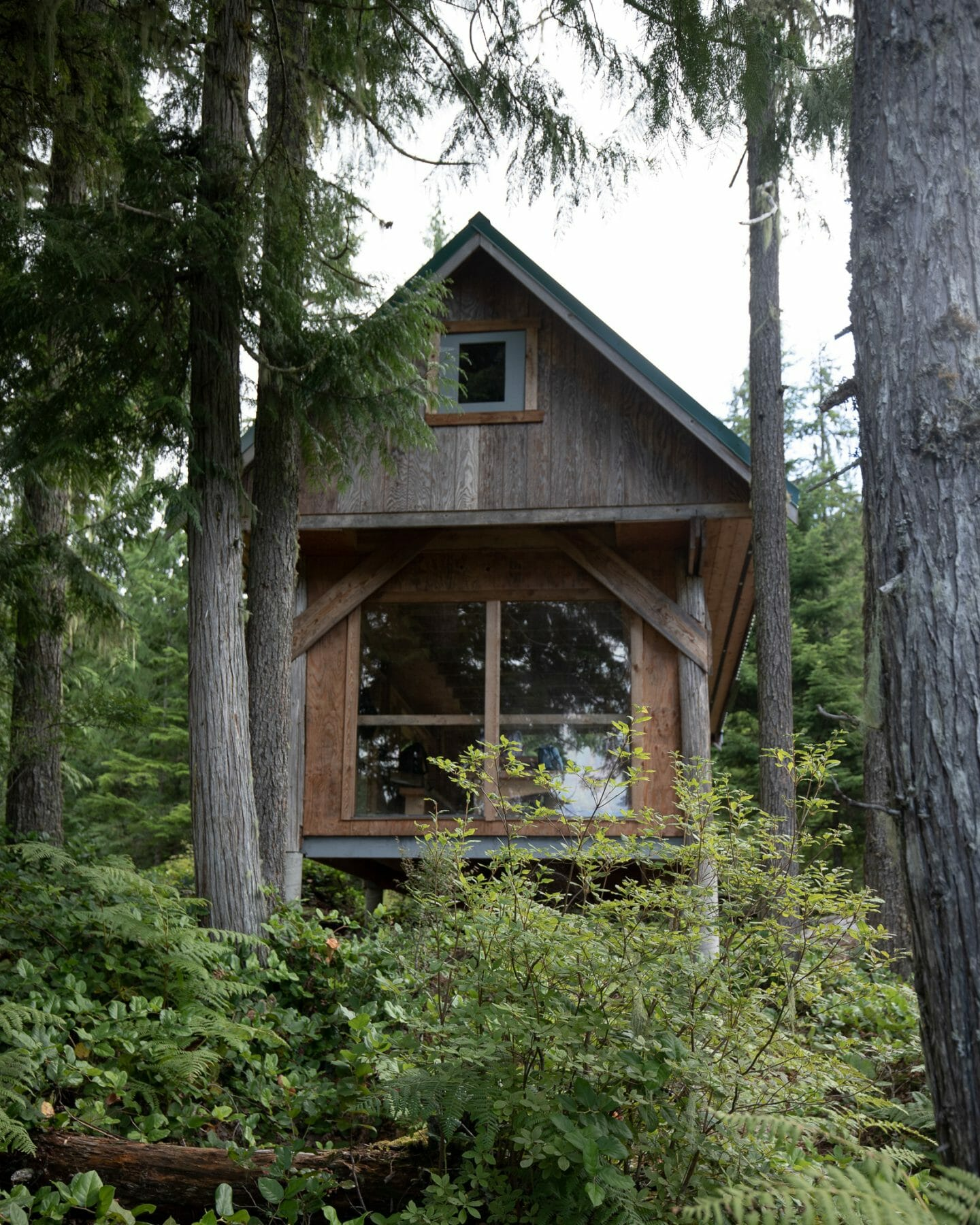 Things to do in Powell River - Sunshine Coast Trail